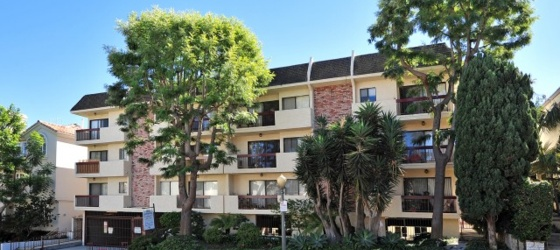 1 BED + 1 BATH APT IN WESTWOOD close to UCLA (WESTWOOD)