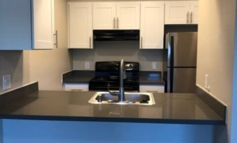 Apartments Near SU Spacious 1 Bedroom 1 Bathroom Apt for Seattle University Students in Seattle, WA