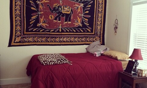 Sublets Near Texas Sublease my beautiful unit! for Texas Students in , TX