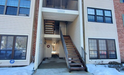 Houses Near Princeton BEAUTIFUL APARTMENT!!!!! for Princeton University Students in Princeton, NJ