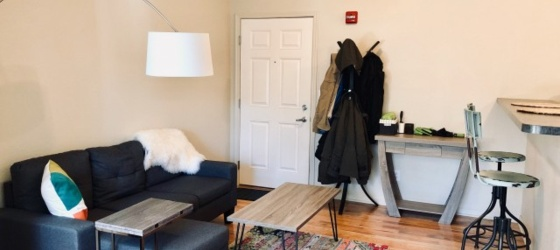 $809 Sunny Loft Sublet with $625 Security Deposit Transfer