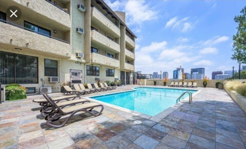 Apartments Near Cal State Northridge Westwood UCLA Luxury Condo 5 bed 4 bath for Cal State Northridge Students in Northridge, CA