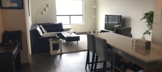 SkyVue 1 Bedroom Apartment Available From June 11 until July 31