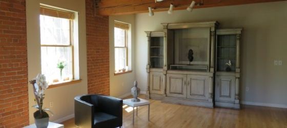 MIDDLETOWN Loft Condo, Beautiful!