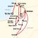 Israel and Jordan Adventure