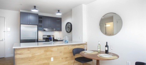 1BR available with modern appliances and in unit washer/dryer for early May move in!